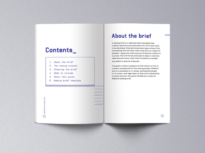 image of ebook inner pages
