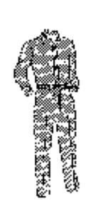 UPS uniform