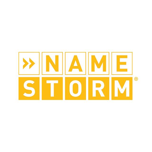 Namestorm logo